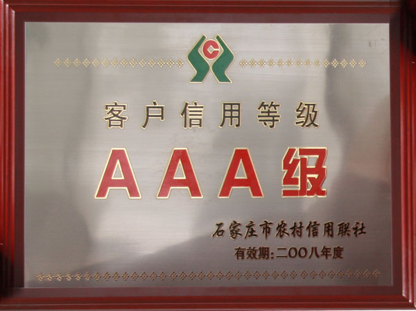 2008AAA credit rating